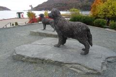 Labrador and Newfoundland DOgs
