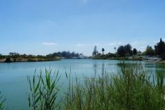 Carthage harbour